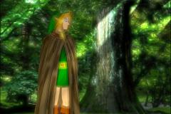 Link dans les bois